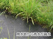 大雨で水が溢れる水路