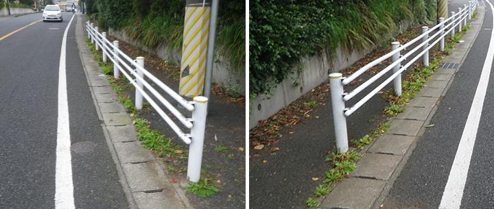 歩道部とコンクリート側溝の境界から生える雑草